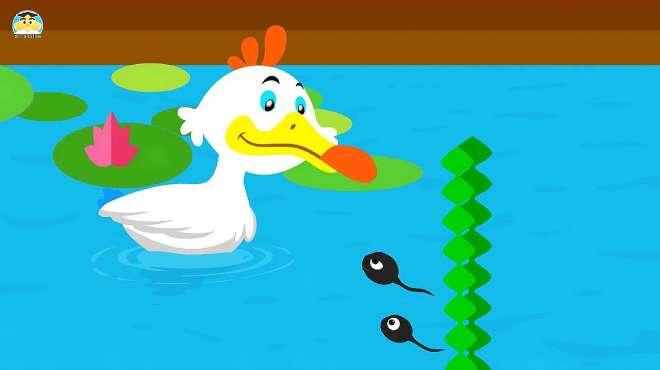 快乐学拼音:学习声母k(科)的读写和组词,看动画听故事学拼音